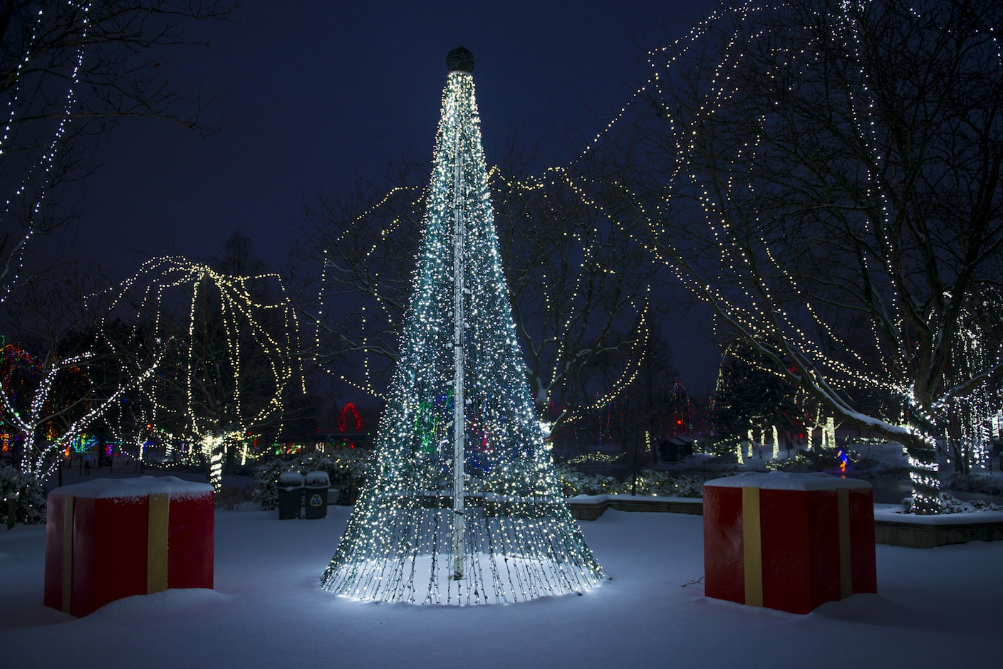 Image result for wildlights columbus